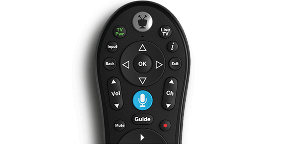 Vyve Voice Remote